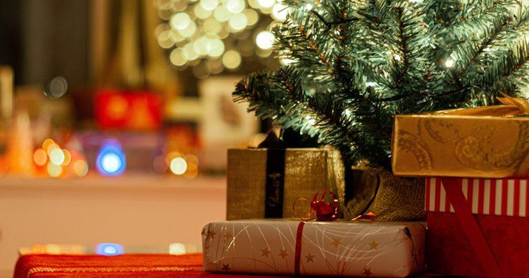 【ヴィーガン】フランスのおすすめクリスマスプレゼント7選