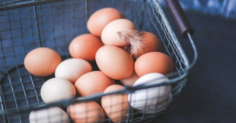 卵は健康に悪い?その実態と理由を徹底解説 卵の代替品もご紹介