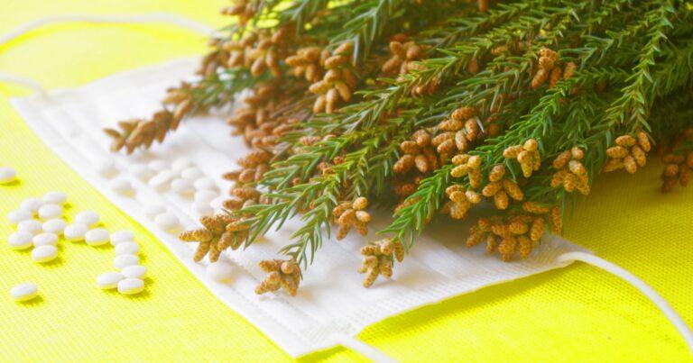 ヴィーガンは花粉症対策に効果的あり?その実態を徹底解説