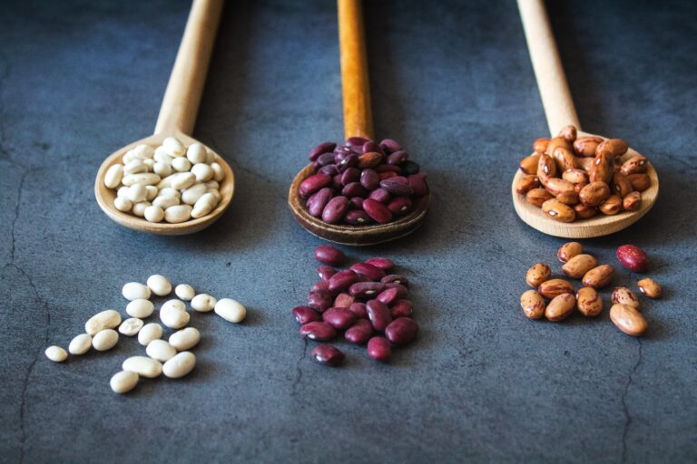 ヴィーガン生活の強い味方!大豆以外の豆5種の栄養素について徹底解説